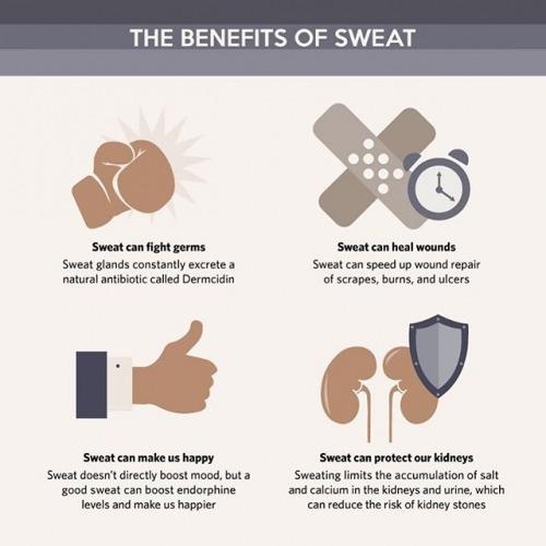 It's healthy and beneficial to sweat!  #BenefitsOfSweating #SweatMore #SportLyte #Sports #SportLife #Sporting #SportGirl #SportMen #SportsWear #Hydration #Sweat #Electrolyte #Fitness #FitnessLife #Follow4Follow #Like4Like #KnownledgeIsPower #GoHarderGoFurtherGoFaster